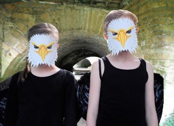 freyja and imo falcons