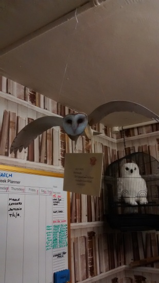 Mr Budd's office Barn Owl with letter