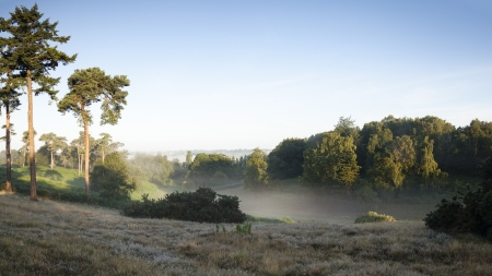 Sutton Hoo - Picture courtesy of the National Trust